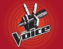 Jury The Voice of Poland w komplecie